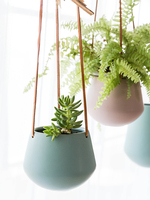 Indoor Green Radish Ceramic Flower Pot Solid Color Lazy Plant Belt Hanging Hanging Basin Basket