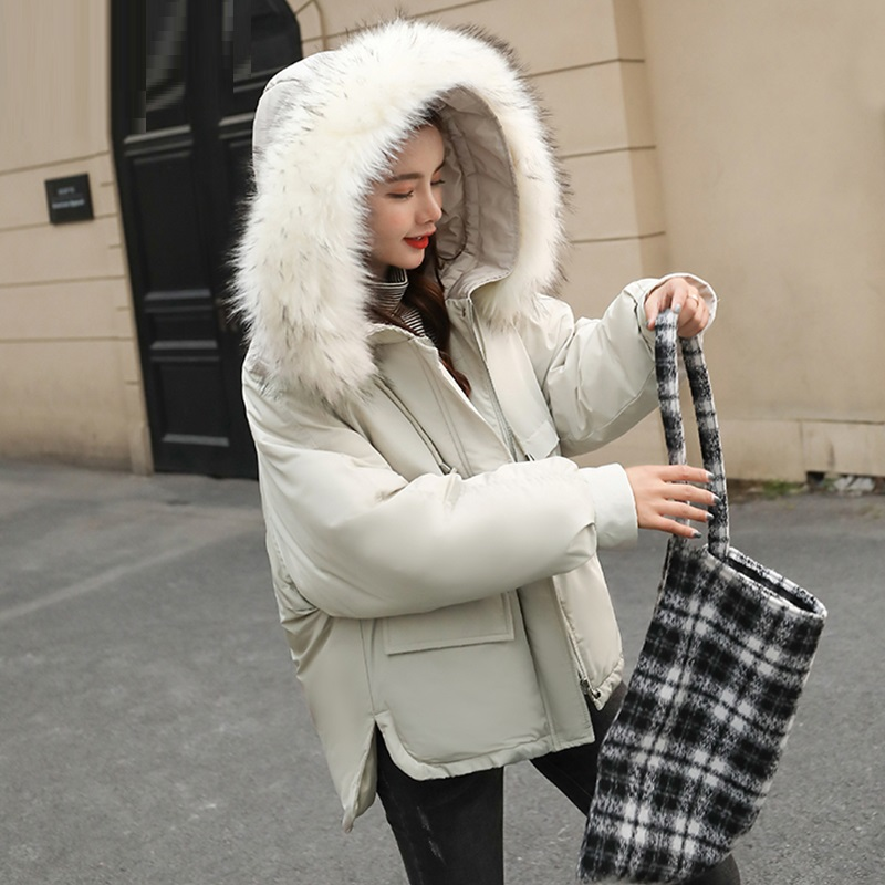Female Autumn Winter Jacket 2018 Fashion Women Parka Hooded Fake Fur Hooded Down Cotton Thick Warm Short Coat White Overcoat