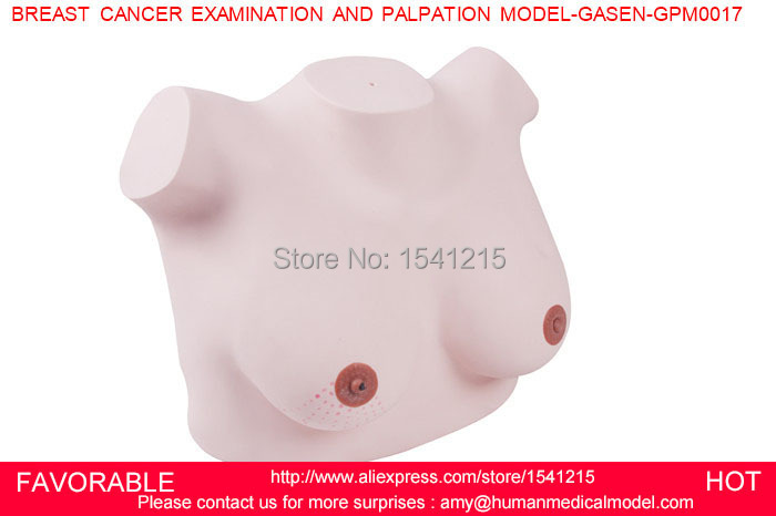 BREAST EXAMINATION SIMULATOR,BREAST EXAMINATION AND DIAGNOSTIC SIMULATOR,BREAST CANCER   PALPATION MODEL GASEN-GPM0017 what is breast examination checking for lumps in breast by early breast cancer detection device