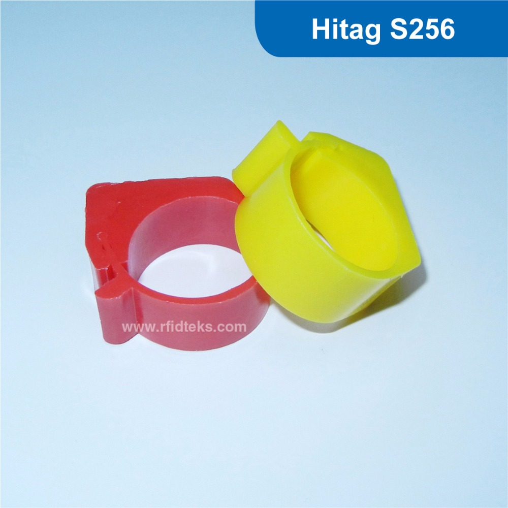 passive rfid Chicken ring tag rfid chicken tag 125KHz RFID Animal Tag RFID pigeon foot tag with Hitag S256 Chip Free Shipping 134 2khz rfid animal identification round pig ear tag for livestock animal tracking and indentification 500pcs lot good quality