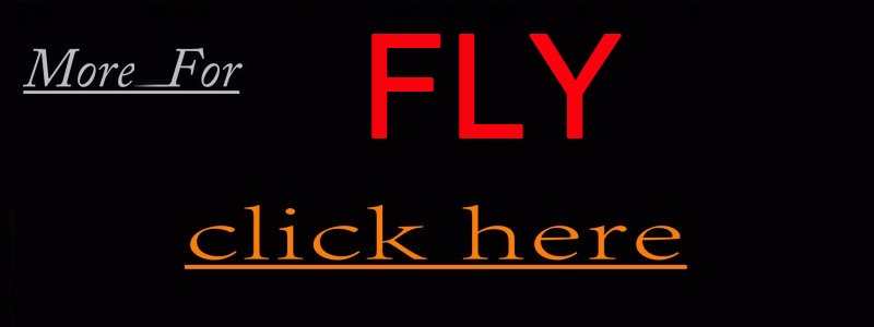 more for Fly