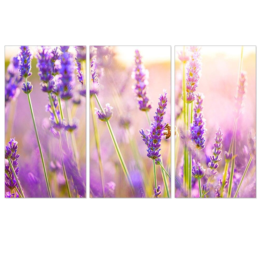 Фиолетовый цветок прованса