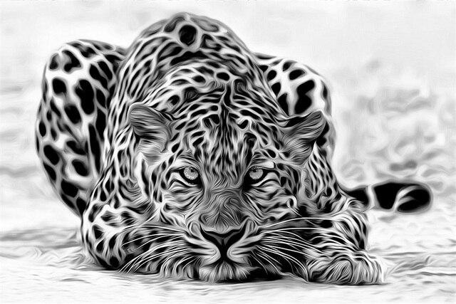 Personnalise Toile Art Leopard Affiche Leopard Animal Papier Peint