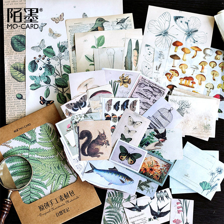 36pcs/pack Natural Collection Record Retro Plants Skull Fern Birds Mushroom Tags Decorative Sticker DIY Scrapbooking Label Album