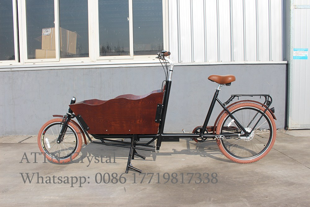 Beautiful design 2 wheels electric tricycle cargo bike for carrying kidsBeautiful design 2 wheels electric tricycle cargo bike for carrying kids