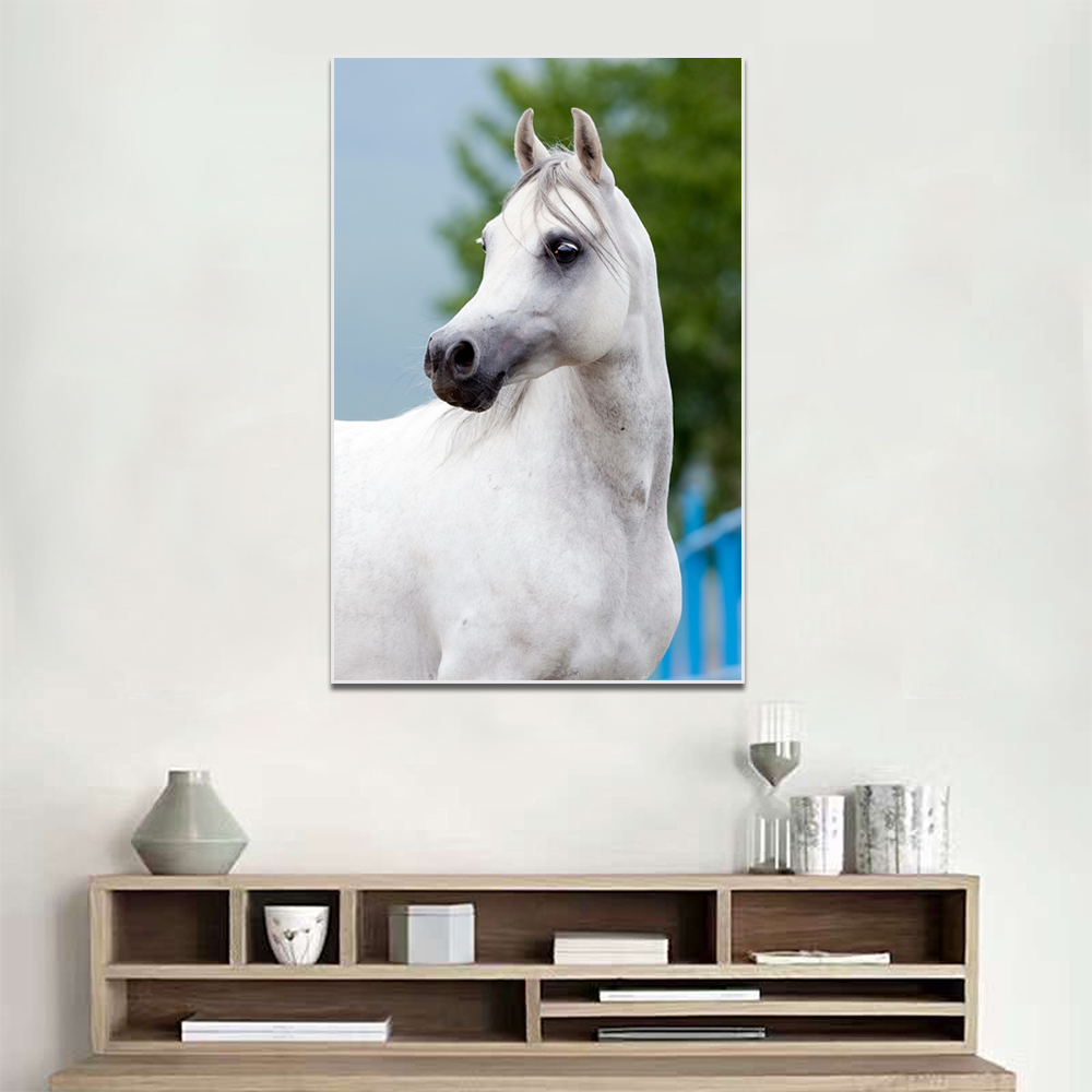 Unframed Canvas Animal Painting White Horse Running Picture Prints Wall Picture For Living Room Wall Art Decoration