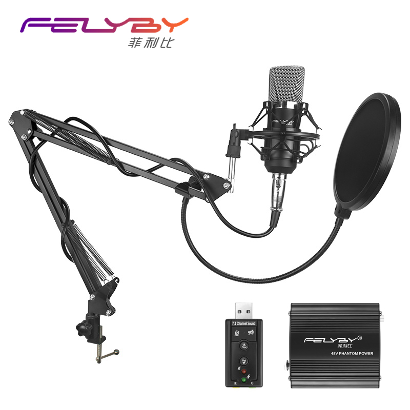 FELYBY BM 700 Professional Condenser Microphone High Quality 3.5mm Wired Sound Recording microphone for computer Phantom power heat live broadcast sound card professional bm 700 condenser mic with webcam package karaoke microphone