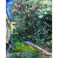 عالية الجودة لوحات فنسنت فان جوخ حديقة القديس بولس المستشفى في سان ريمي اليدوية قماش الفن الاستنساخ