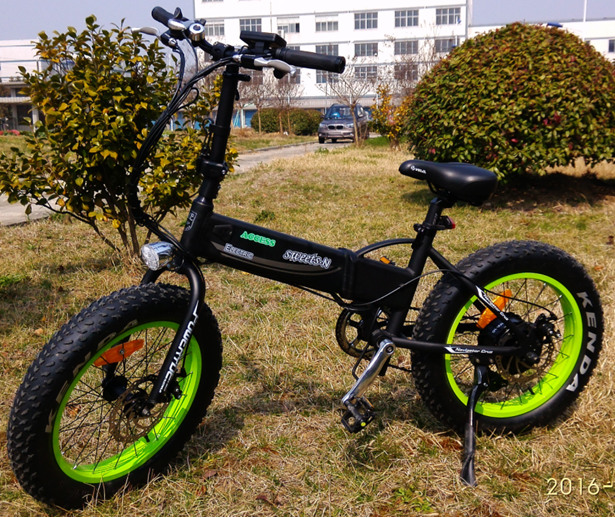 Small Electric Bike Fat Tire Electric Bicycle Folding