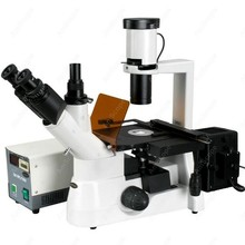 Culture Fluorescent Inverted Microscope–AmScope Supplies 40x-600x Plan Phase Contrast Culture Fluorescent Inverted Microscope