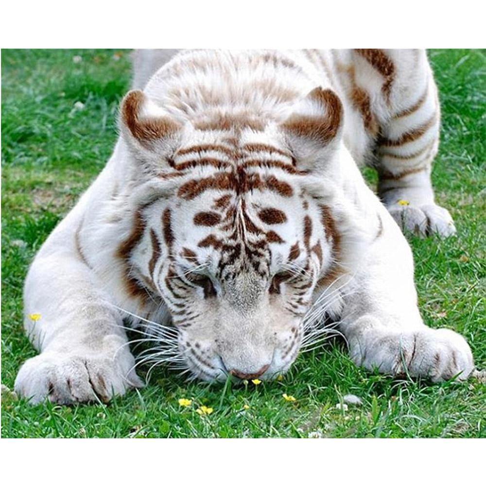Сделай сам поделки тигр