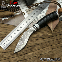 LCM66 Handmade Forged Damascus Steel Hunting Knife 60HRC Damascus Steel Fixed Knife Horns Handle With Leather