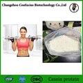 Best selling 500g a granel de alimentos em pó grau de caseína protein70 % suplemento desportivo aumentar a aptidão muscular nutrição