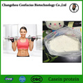 Best selling 500g bulk food grade powder of casein protein70% sports supplement increase muscle fitness nutrition