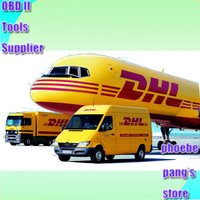 Link For DHL Remote Area Fee Or Ship By Other Method Phoebe Pang Store