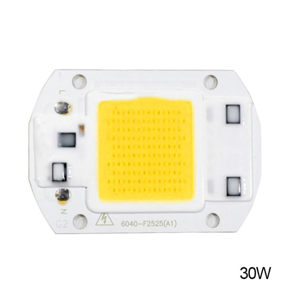 Hot 20W 30W 50W LED Chip 220V LED COB Bulb Chip Input IP65 Smart IC Fit For DIY LED Flood Light LED Modules High Quality
