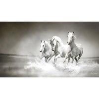 New Generation Magic 5D Diy Embroidery Diamond Painting Three White Horse Square Drill Cross Stitch Rhinestone