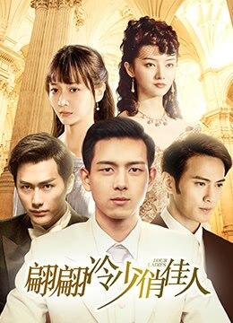 《翩翩冷少俏佳人》2016年中国大陆剧情,爱情电视剧在线观看