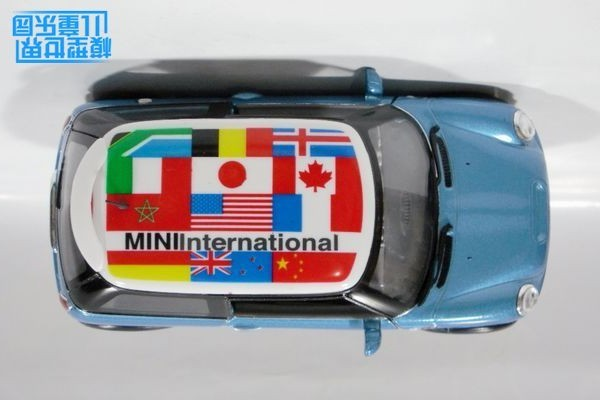 Mini 2 (18)