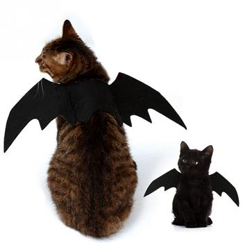 Cat Bat Wings Costume  1