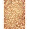6x10ft Lavable tela de Vinilo Transparente y Sin arrugas F-2701 fondos de Fotografía Equipo Fondo Impresión del paño de Oxford