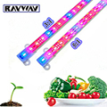 100Meter 100*100cm 5630/5730SMD Waterproof Led bar rigid strip light fish tank plants Grow Lamp Red Blue 5:1/3:1 growth lighting