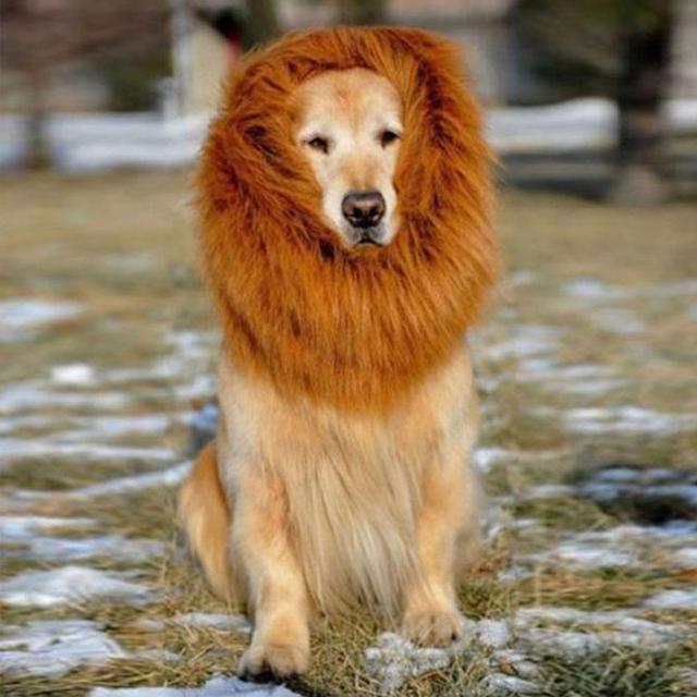 fac1f1386 Pet Costume Lion Mane Wig For Pet Dogs Costume Festival Fancy Dress Pet Lion  Hair Pet Dog Hair Accessaries Adjustable Brown