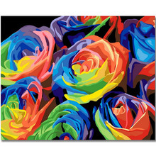 WEEN Colorful rose-Framed Oil Paint By Numbers,Modern Wall Art Picture Home Decor,DIY Painting Numbers,Acrylic 40x50cm