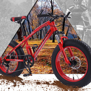 Image 5 - wolfs fang Bicycle Mountain bike 7/21 speed Fat Road Snow Bike 20*4.0 folding Bike bicicleta Front and Rear Mechanical Disc