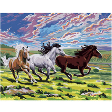 WEEN Animal Prairie horse-DIY Oil Painting By Number for Kids&Adults,Wall Art Picture,Oil Kit Beginner 16x20inch