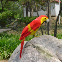About 40cm Coloured Red Feathers Parrot Bird Handmade Model Polyethylene Feathers Macaw Bird Home Decoration Toy