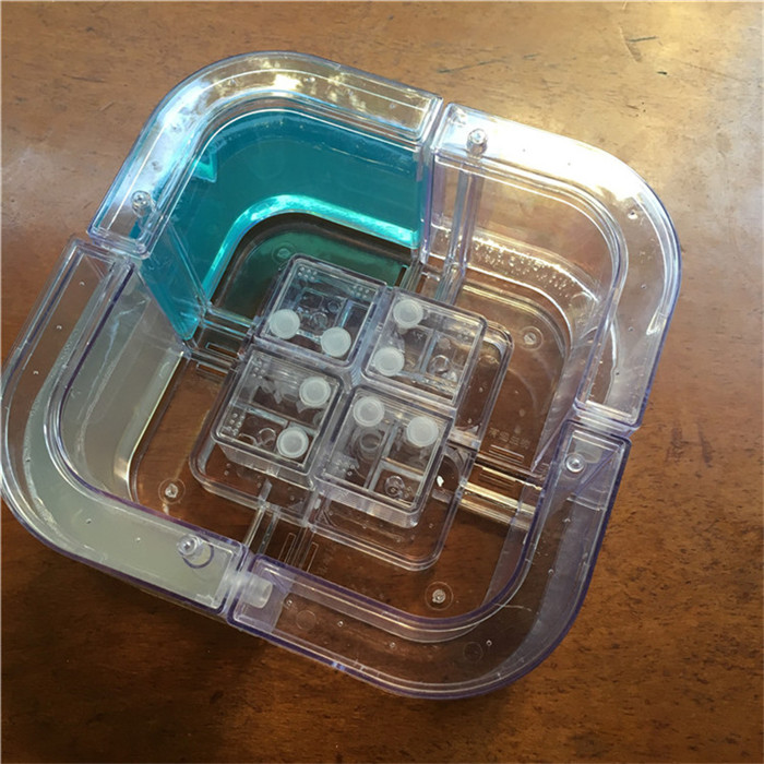 transparent-ant-nest (2)