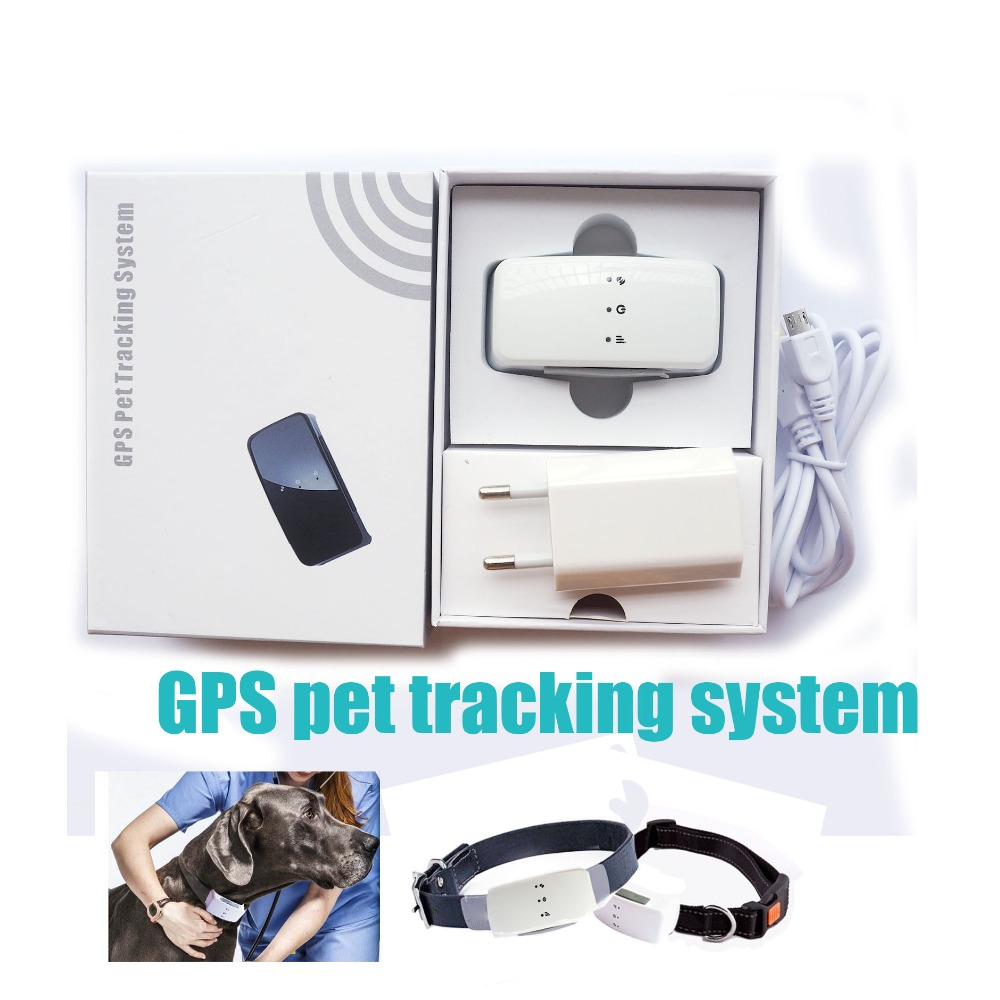 DS007 5pcs/lot GPS tracker pets / newest gps tracker for pet / gps pet tracker reachfar rf v40 wi fi gps pet tracker blue