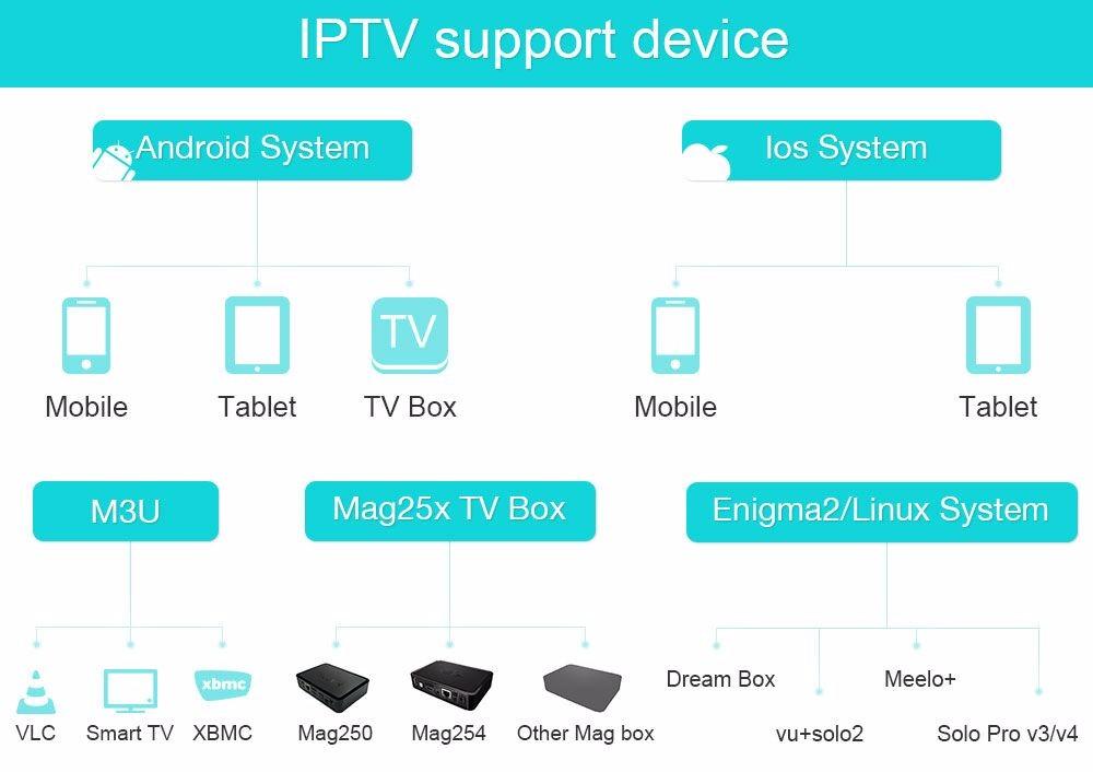 IPTV support Device
