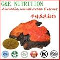 Изготовление GMP Полисахариды Antrodia cinnamomea extract/Antrodia camphorata экстракт 300 г
