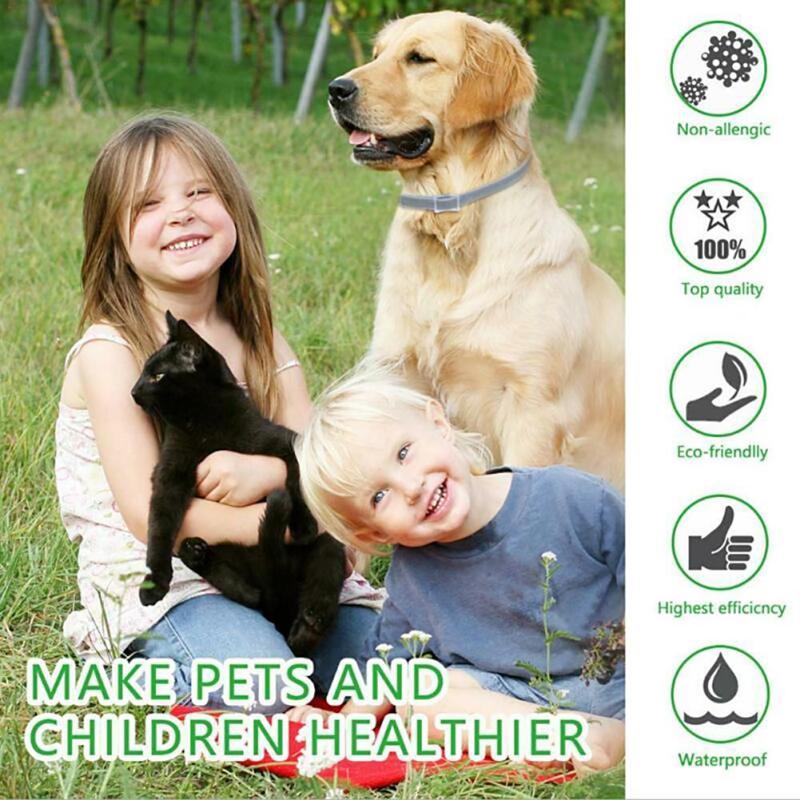 Peine médico quita pulgas para Perros y gatos