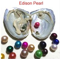 5pcs Vacuum packed Single Edison Pearl Oyster 9 12MM Round Edisons Pearl in Freshwater Shell Love Pearl Edison Oyster PO9