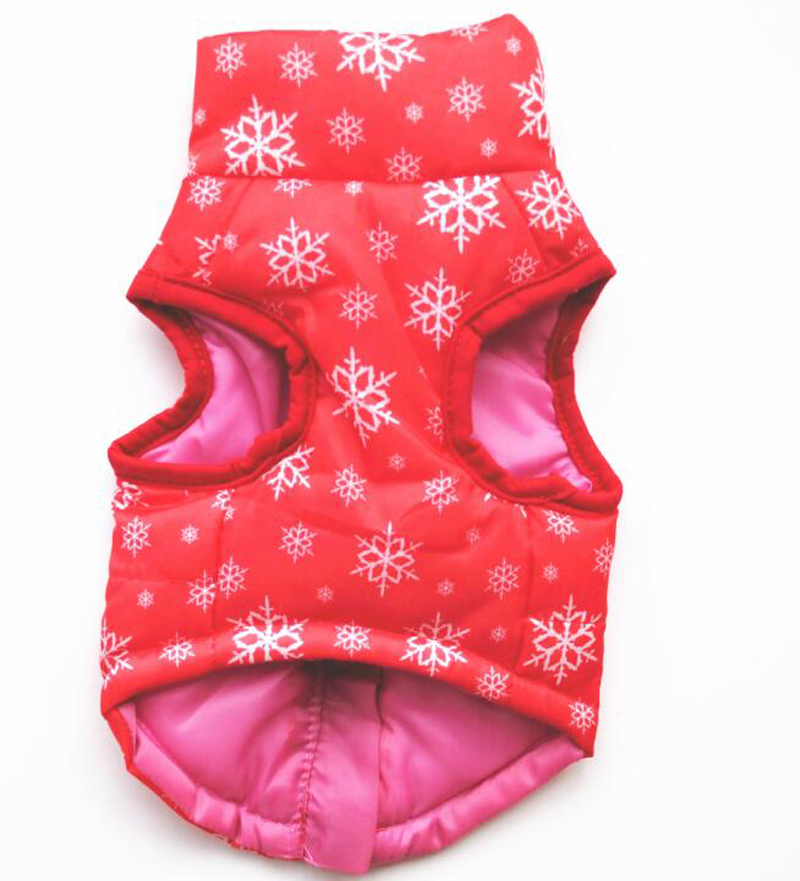 dog winter clothes (6)