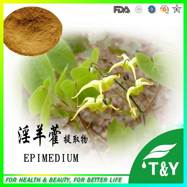 Brevicornum epimedium extrato GMP Certificado 100% Pure Natural 100g