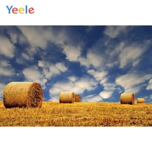 Yeele Vinyl Autumn Harvest Wheat Fields Haystack Sky Photography Background Customized Photocall Backdrop For Photo Studio