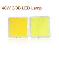 100x95mm COB LED Lamp 40W DC12V Square Light Bulb Source Brightness DIY For Solar Lamp Street