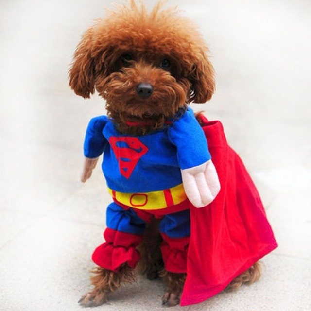 Us 29 27 Offfunny Dog Clothes Halloween Costume Puppy Coat For Small Dogs Pets Costume Coat Chihuahua Clothes 25s2 In Dog Coats Jackets From