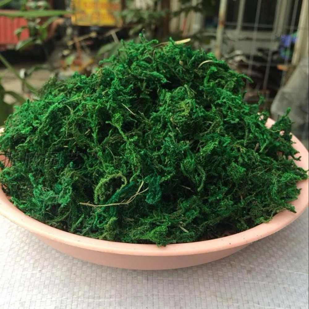 Natural 20/50Gram Bag Dry Green Moss Decorative Plants Vase Artificial Turf Silk Flower Accessories For Flowerpot Decoration
