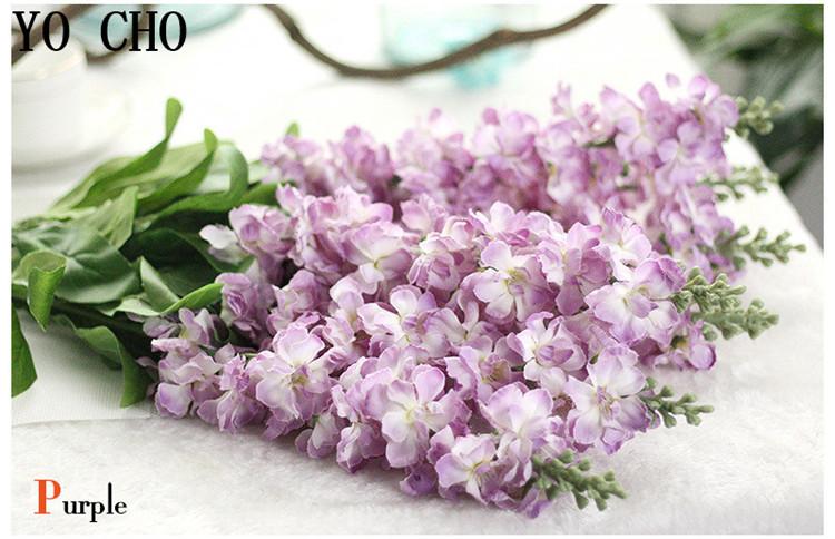 Larkspur hyacinth Snapdragon flower12