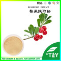 Pure natural Alpha Arbutin,alpha arbutin powder,bearberry extract