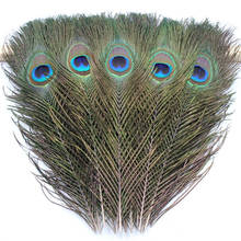 20PCS/Lot Peacock Feather Earrings necklace clothing hat wedding party family wreath decorates material 25 - 30cm