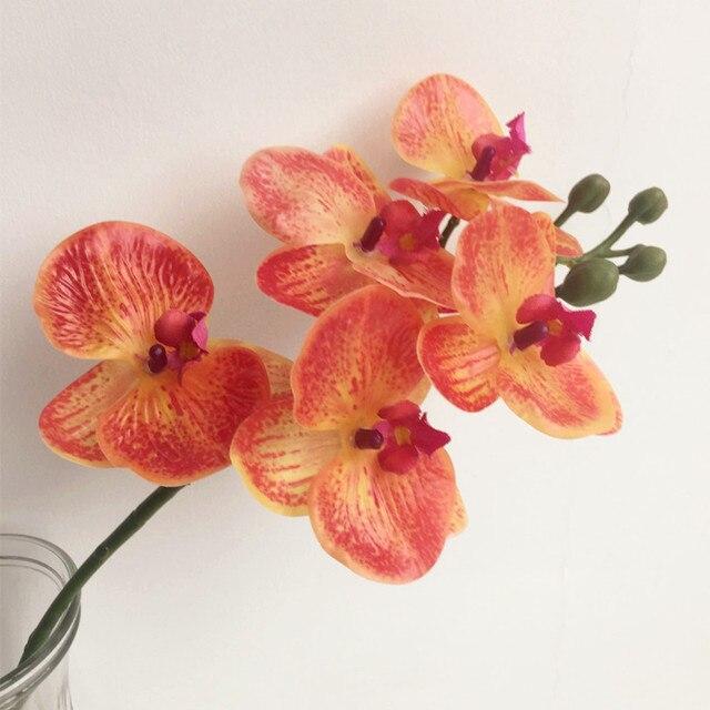 Orchideen Kopf ein stück echten hauch orchideenblüte 5 kopf mini orchideen