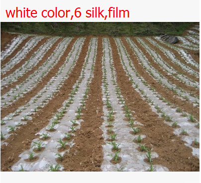 Free shipping,20 square 2x10M 6 silk,white color,Garden PE film flower greenhouse plastic mulch.plastico para invernadero