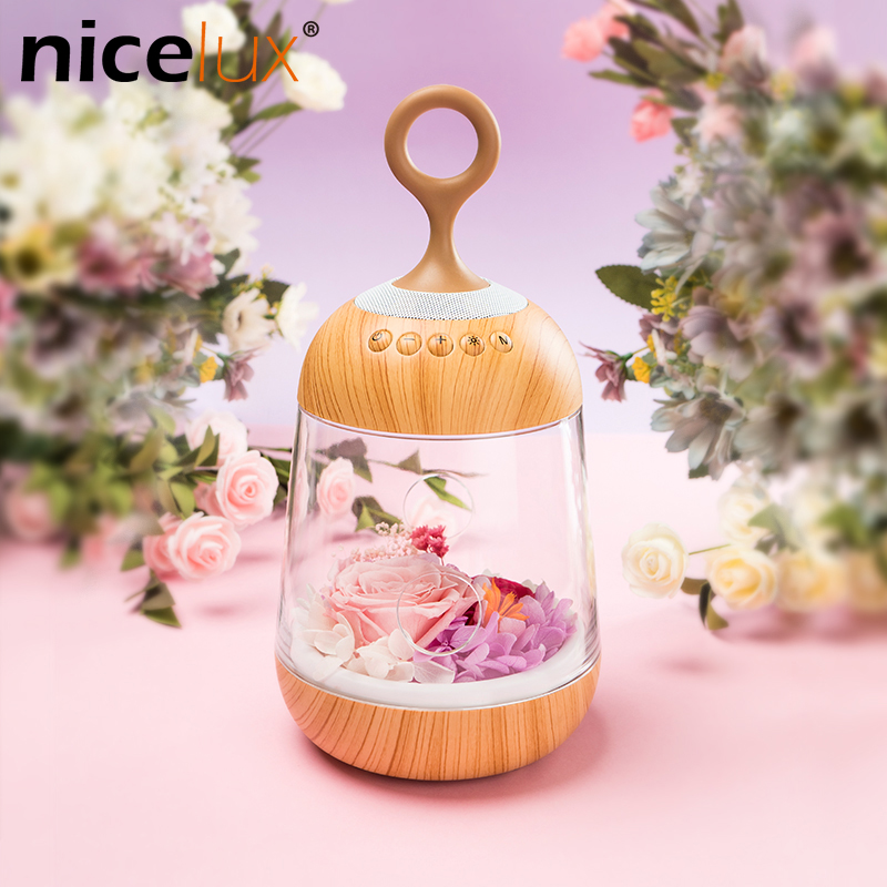 Romantic Flower LED Night Light Rechargeable Streamer Bottle Creative Bulb Rose Gift for Girl Table Lamp with Bluetooth Speaker led night lamp decorate dream bluetooth voice speaker christmas ever fresh flower creative music box rechargable desk light gift