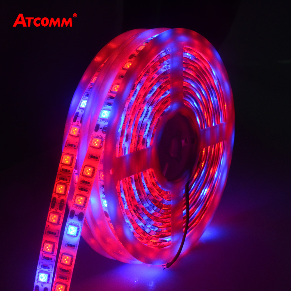 5 M LED phyto Lámparas espectro completo llevó la luz de tira 300 LED 5050 chip LED fitolampy Luces progresivas para invernadero hidropónico planta